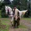 """Father had horses so I have always been around them. I alwa"